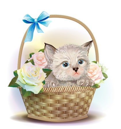 Illustration of  the fluffy kitten sitting in a basket with roses.  Vector