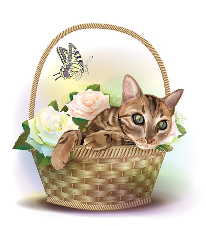 bast: Illustration of  the tabby cat sitting in a basket with roses.