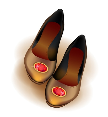 brooch: ballets flats shoes with red brooch   Illustration