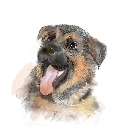 whelp: portrait of the german shepherd puppy Illustration
