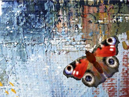 oil paints: Resumen de fondo con la mariposa. Pinturas al �leo sobre lienzo