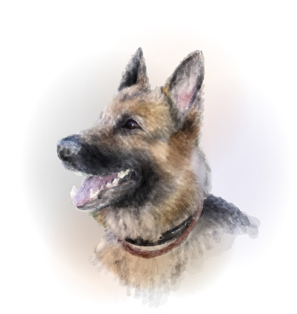 whelp: portrait of the german shepherd dog Illustration