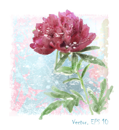 floriculture: hand drawn  watercolor red peony flower