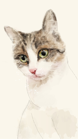 hand drawn watercolor sketch of the cat 向量圖像