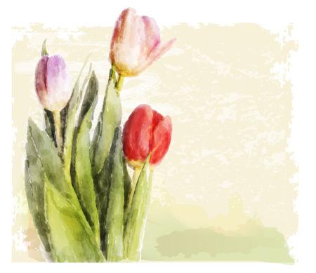 floriculture: Bouquet of tulips. Watercolor illustration Illustration