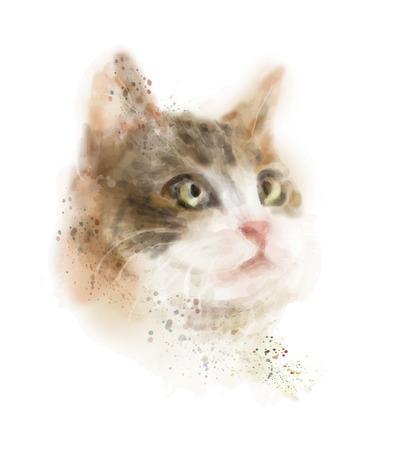 puss: vintage hand drawn watercolor portrait of the cat