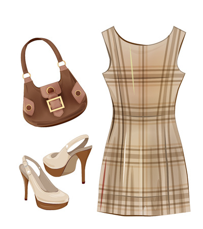 leather goods: Fashion items for girls. Casual dress, shoes and handbag. Illustration