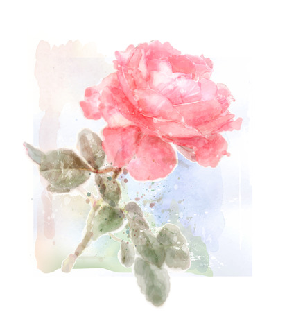 floriculture: imitation of watercolor illustration of red rose