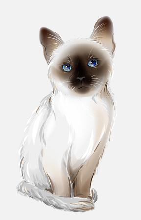 タイの猫の肖像画