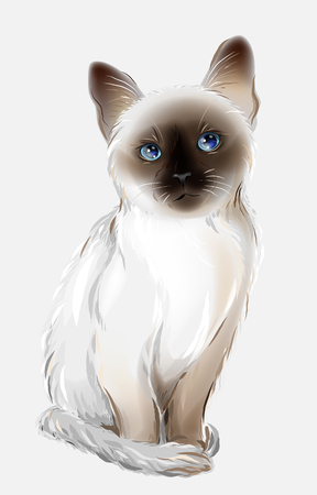 portret van de Thaise kat