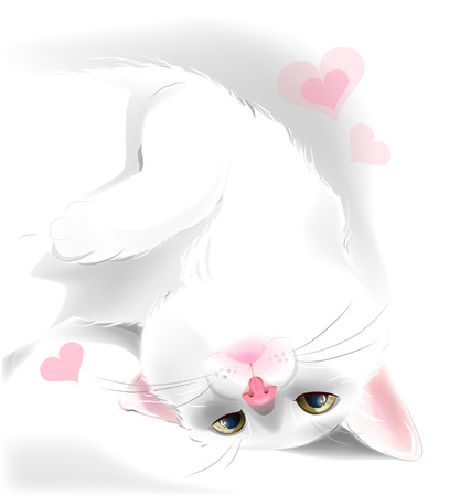 kitties: playful white cat for Valentines day greeting card