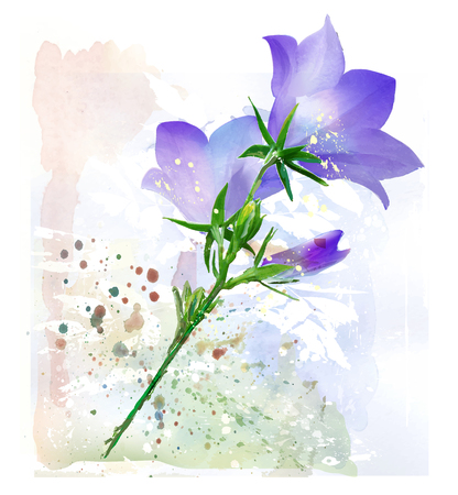 bluebell: Bluebell. Imitation of watercolor painting. Illustration