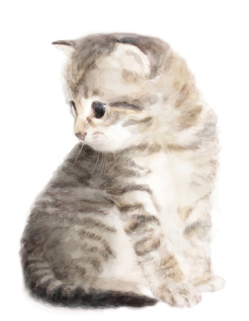 drawing an animal: Fluffy kitten.  Imitation of watercolor painting. Illustration