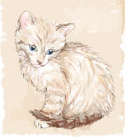 kitten: hand drawn portrait of the kitten