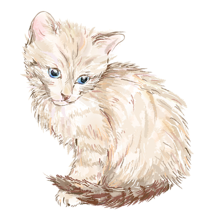 picturesque: hand drawn portrait of the kitten