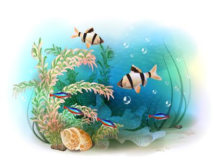 Ilustracja tropikalnego świata podwodnego. Ryby akwariowe.