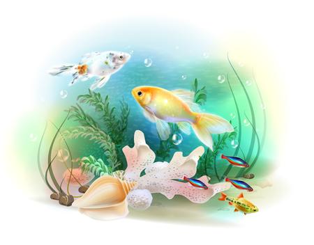 aquarium hobby: Illustration of the tropical underwater world. Aquarium fish. Illustration
