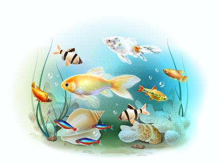 ichthyology: Illustration of the tropical underwater world. Aquarium fish. Illustration