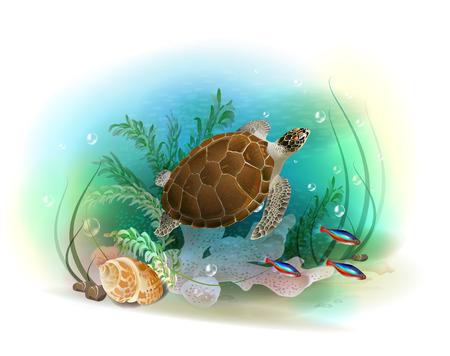 neon fish: Sea turtle swims in the ocean. Illustration of the tropical underwater world. Aquarium fish.