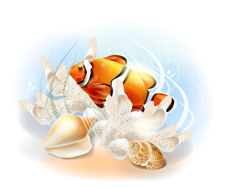 ichthyology: Clownfish in the sea. Illustration of the tropical underwater world. Aquarium fish. Illustration