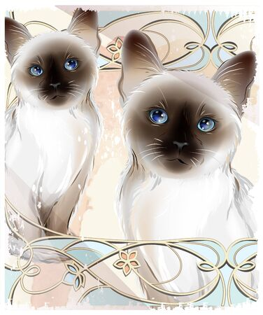 siamese: Portrait of the couple Thai cats. Traditional Siamese cats. Two kitten on the grunge background.