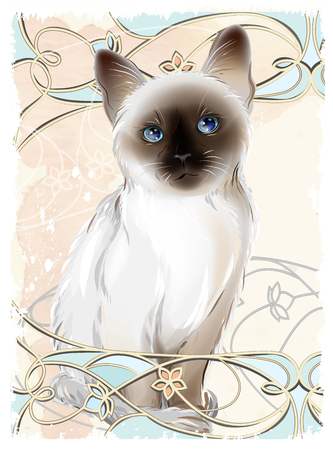 siamese cat: Portrait of Thai kitten . Traditional Siamese cat.