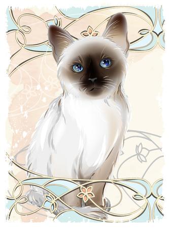 siamese cats: Portrait of Thai kitten . Traditional Siamese cat.