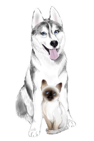 White And Gray Adult Siberian Husky Dog and Thai Kitten. Vector Illustration