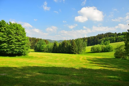 Bavarian landscape with meadows and woods under a blue sky. Upper palatinate, county of Cham, Bavaria, Germany.