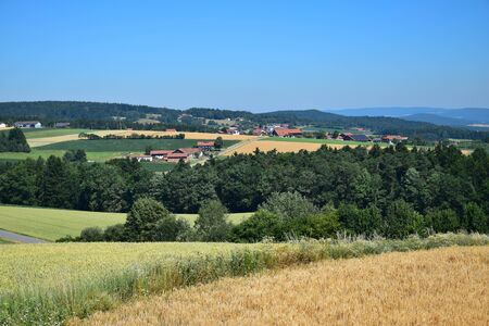 A small town in Bavaria in the summertime. A corn field in front, a few houses in the background. Municipality of Traitsching, district of Cham, Upper Palatinate.