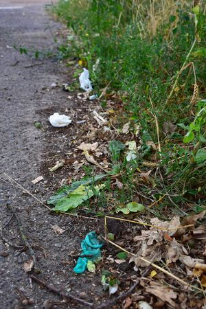Garbage lying on the roadside, carelessly discarded. Some weeds around. A condom, soft tissues and a cigarette end.
