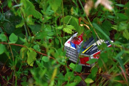 An empty cigarette pack lying in the grass, carelessly discarded.