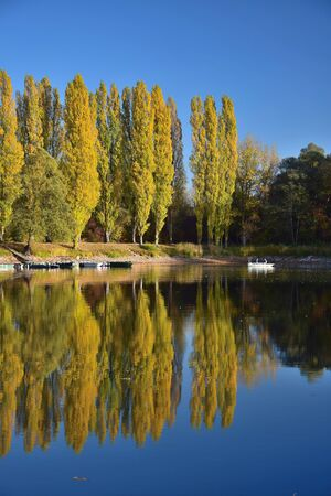 Autumn landscape. A lake, some boats and two people boating. Yellow poplars in the background. 68782 Bruehl, Baden-Wuerttemberg, Germany.