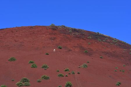 A white-dressed man walking up the red volcano Montana Colorada in Lanzarote, Spain.