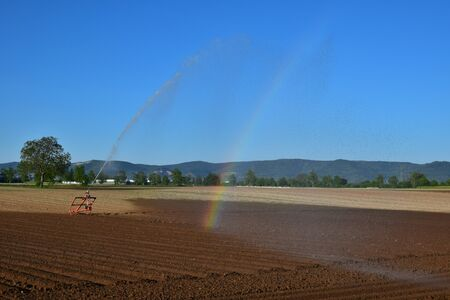 Sprinkler irrigation of a field due to dryness. Dry and wet soil and a rainbow parallel to the water jet. Germany.