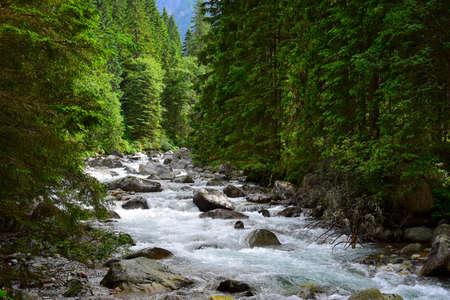 Landscape in the High Tatras. The river Biela voda in the canyon Bielovodska dolina near the border between Poland and Slovakia.