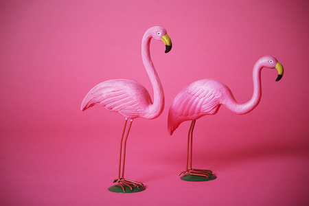 kitsch: Two kitsch pink flamingoes in studio