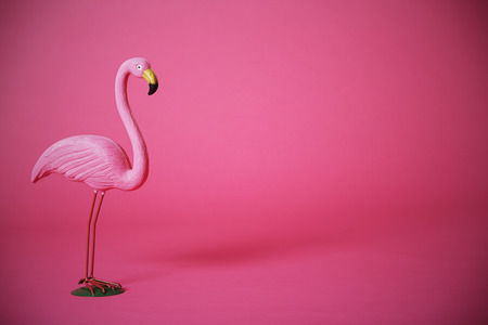 Kitsch pink flamingo in studio Standard-Bild