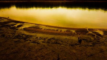 lakescape Imagens