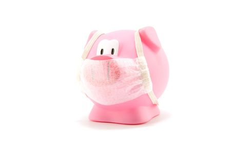 Pig flu with mouth cap isolated on white background photo