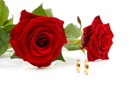 two red roses and wedding rings over white background photo