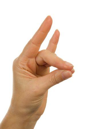Hand gesture: making animal shape over white background Stock Photo - 6389497