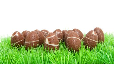 chocolate easter eggs in grass over white background Stock Photo - 6481975
