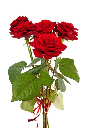 Bouquet of red roses with ribbon isolated on white background Stock Photo