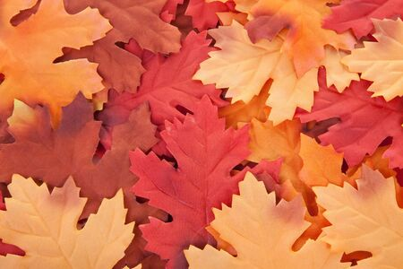 counterfeiting: background of silk colorful autumn leaves in closeup