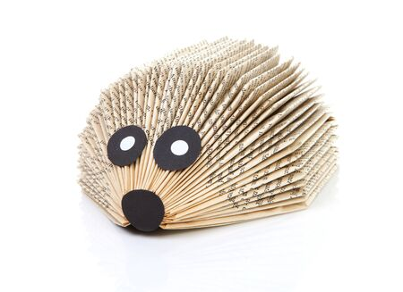 handwork: hedgehog made of book by child over white backgorund