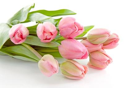 Blumenstrauß aus rosa niederländischen Tulpen over white background Standard-Bild