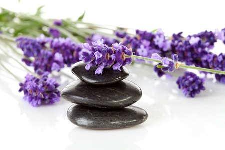 stacked black pebbles stones and lavender flowers over white background