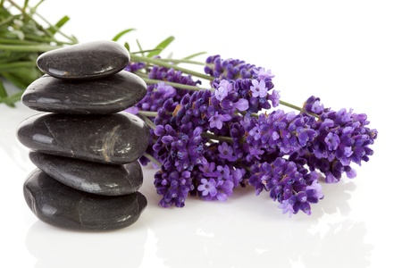 lilac: stacked black steping stones and lavender flowers over white background Stock Photo