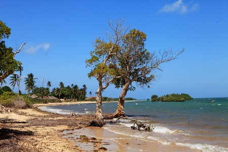 Tropical African beach with typical village and fisher boats Stock Photo - 10378558